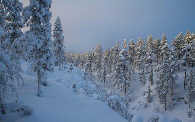 Laponia – zimna i piękna