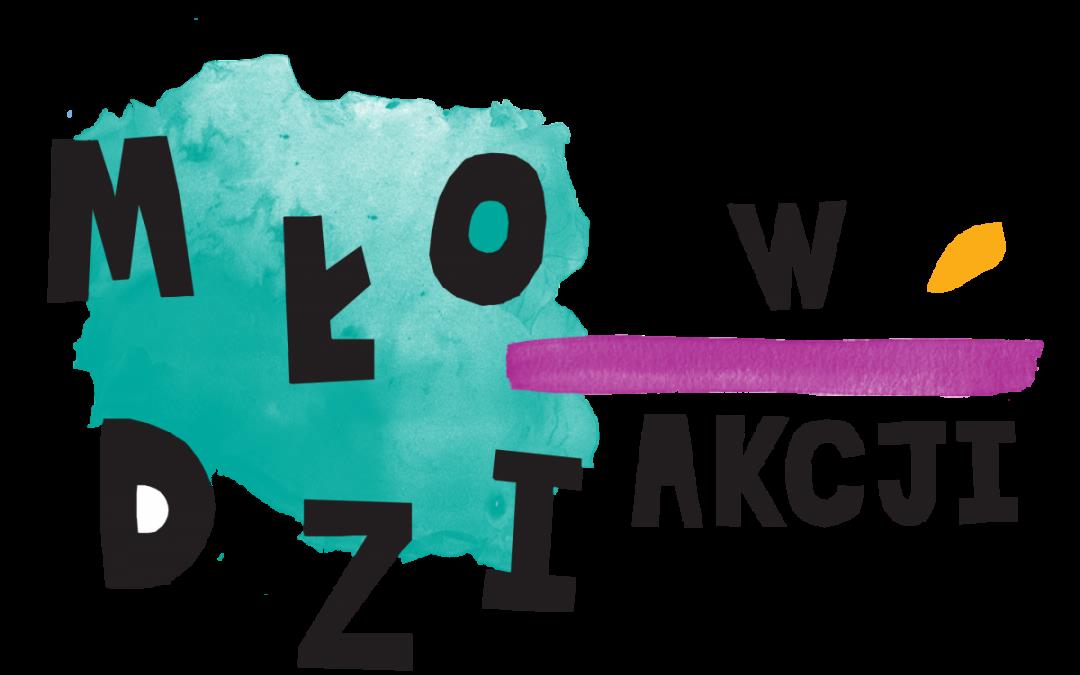 """Uczniowie XV LO w ogólnopolskim  programie  """"MŁODZI W AKCJI+"""""""
